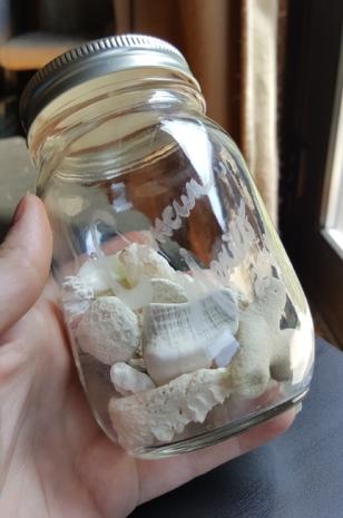 Cancun Shells 07