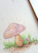 Detail of mushroom watercolor.
